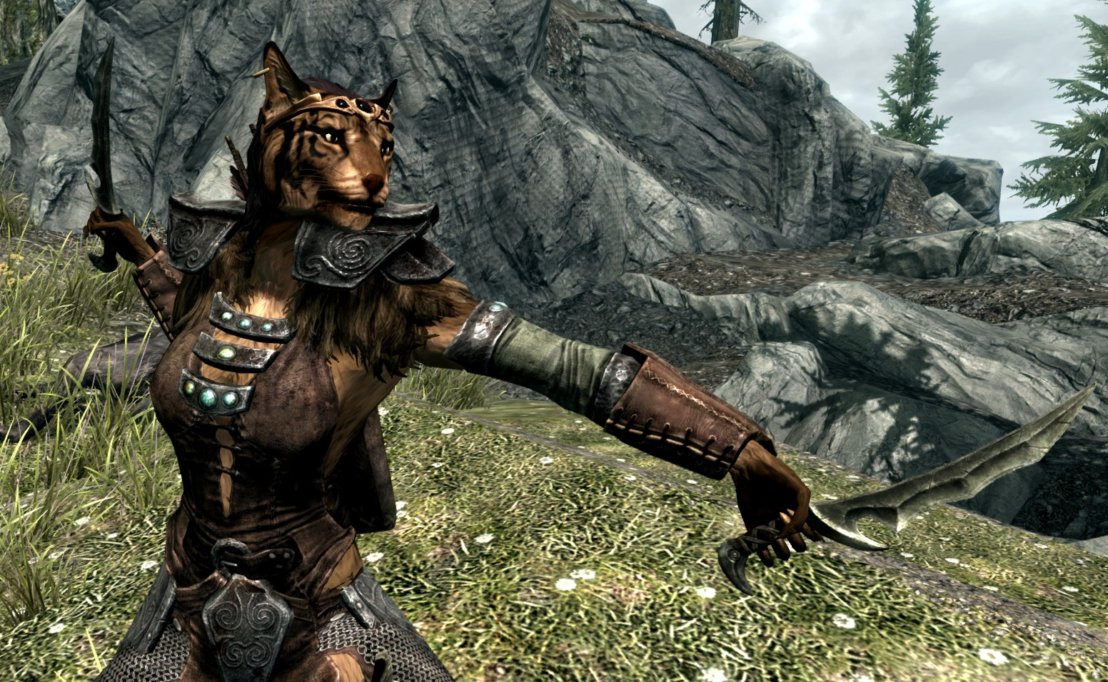 khajiit skyrim the elder - photo #16